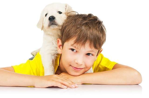Аскариды у детей: пути заражения, 8 групп проявлений, 3 способа лечения