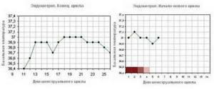 Базальная температура перед месячными: нормы и способы измерения