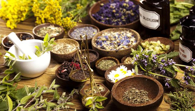 Народные средства от геморроя: 36 лучших рецептов для эффективного лечения