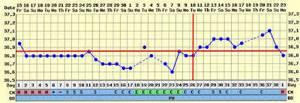 Почему бывает поздняя овуляция, и когда тест покажет беременность