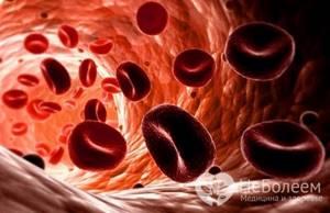 Расшифровка анализа крови у детей: 4 причины назначения, основные показатели
