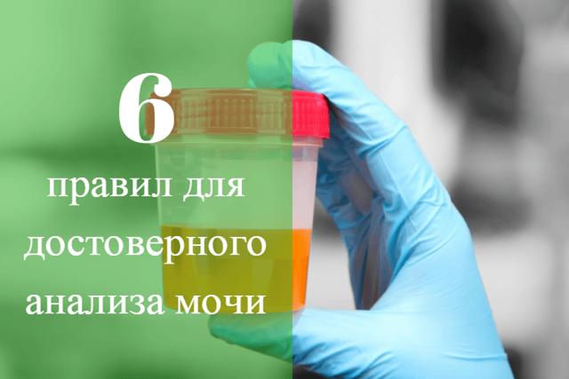 Влияние менструации на результаты анализов крови и мочи
